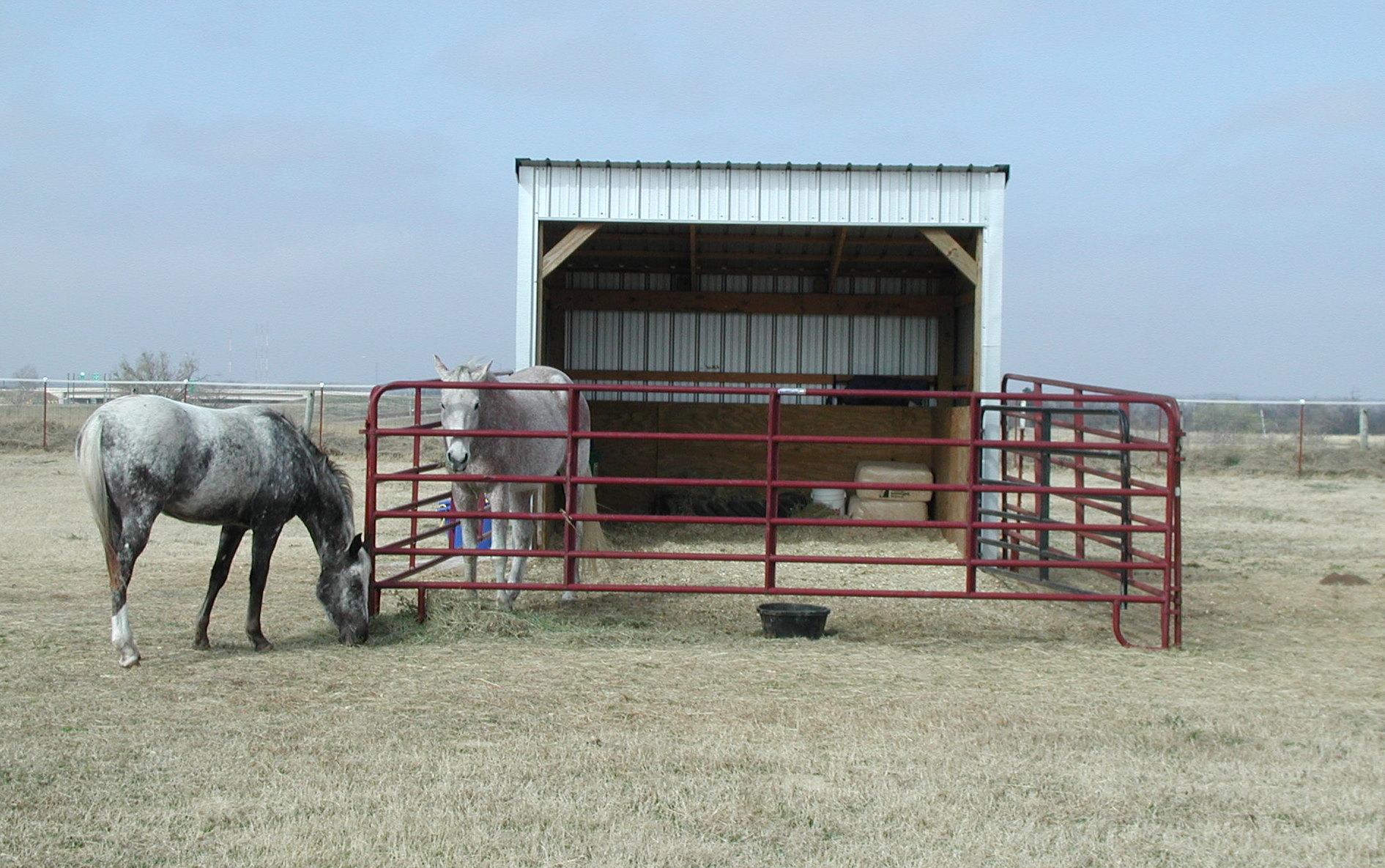 Barn design loafing sheds horse ideology for Barn plans for horses