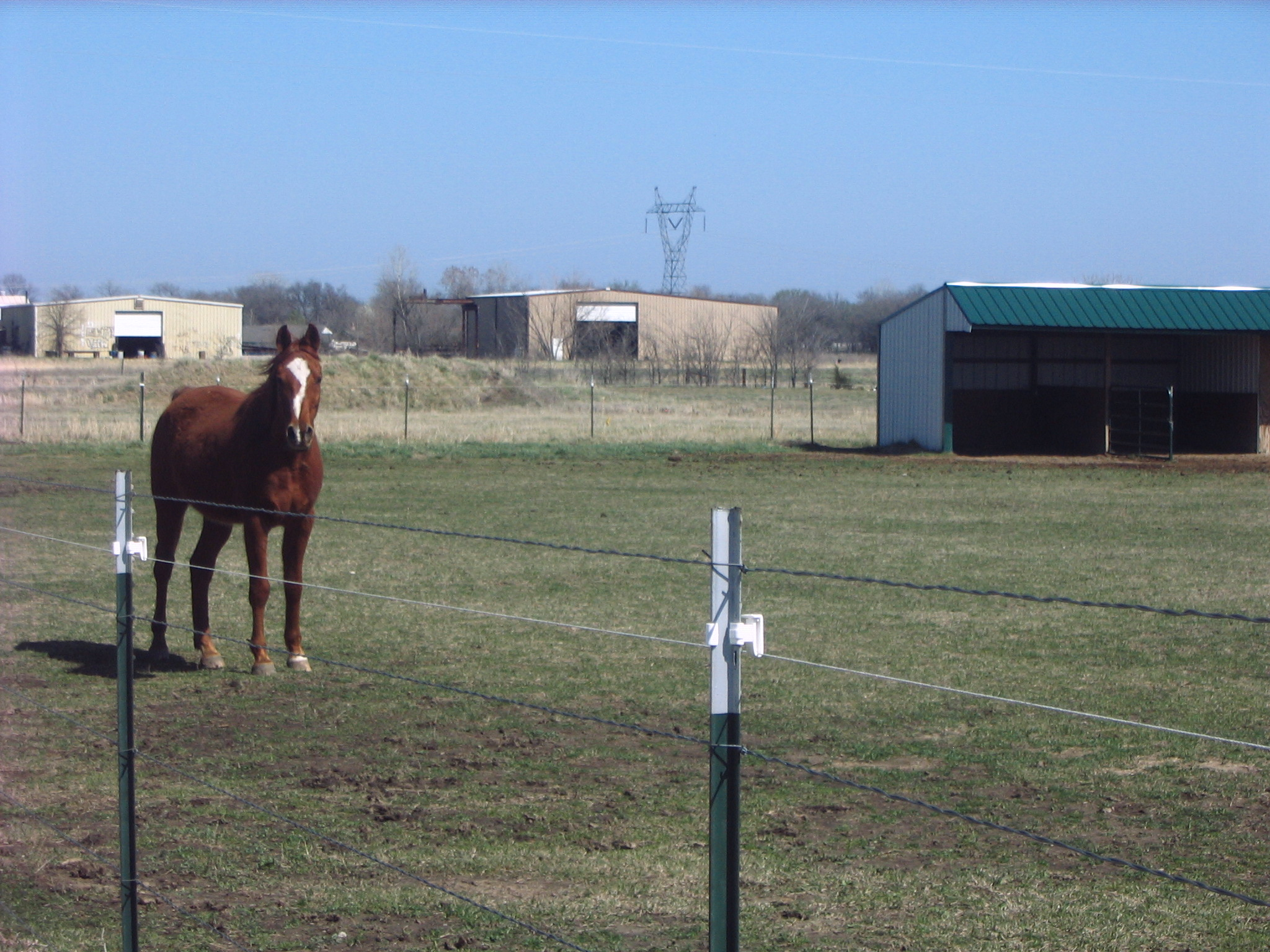 Smooth Wire Fencing With Hot Wire For Horses Horse Ideology