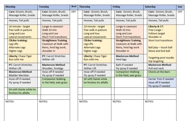 dante_training_week